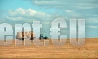 Реколтата от пшеница в Старозагорско - с 30% по-ниска заради сушата