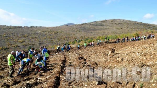 Залесяваме 10 000 фиданки на Магарешка поляна в зелената инициатива на Живко Тодоров