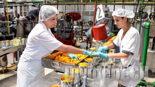 Министър Петков: Над 75 от населението в трудоспособна възраст е реализирано на пазара на труда