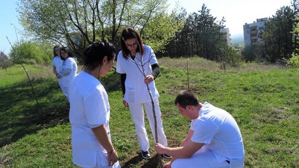 Студентите на Тракийския университет с акция за засаждане на дръвчета