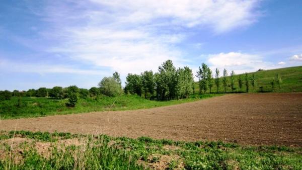Стопаните подават възражения до 13 декември при отказана субсидия за земеделска площ